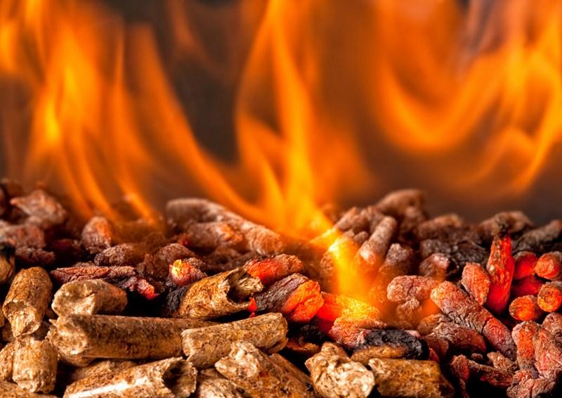 Casi el cien por cien de las subvenciones a la biomasa en Andaluc�a va a la t�rmica