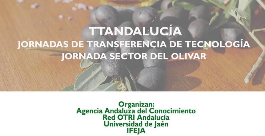 Abierto el plazo de inscripción para participar en la Jornada TTAndalucía sector del Olivar en Expol