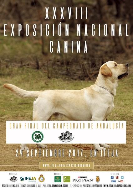 IFEJA acogerá el próximo mes de septiembre la XXXVIII Exposición Nacional Canina