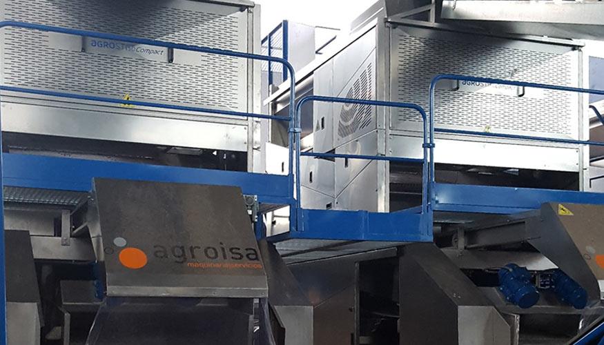 Agroisa desarrolla un proceso de lavado de aceituna que preserva la actividad encimática