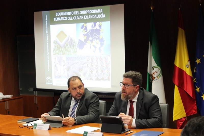 Las exportaciones de aceite de oliva y aceituna hasta octubre superan los 2.900 millones de euros, m