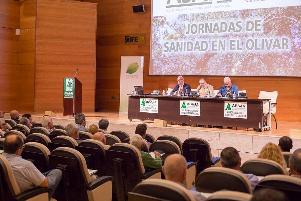Dos centenares de agricultores acuden a las jornadas de ASAJA sobre Sanidad en Olivar que se han cel