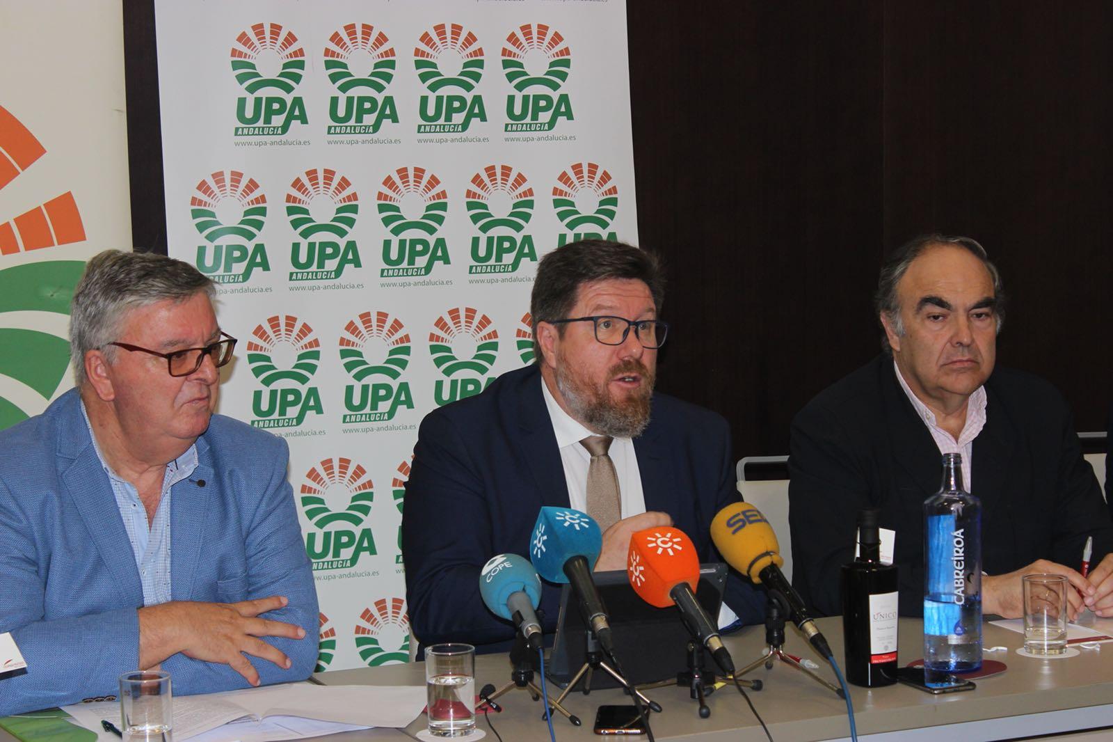 Rodrigo Sánchez Haro resalta que la campaña oleícola, con más de 950.000 toneladas, ha sido