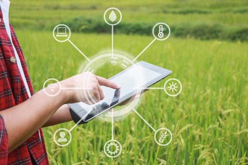 Expoliva LAB by Geolit aglutinará a empresas relacionadas con la innovación y la tecnología aplicada