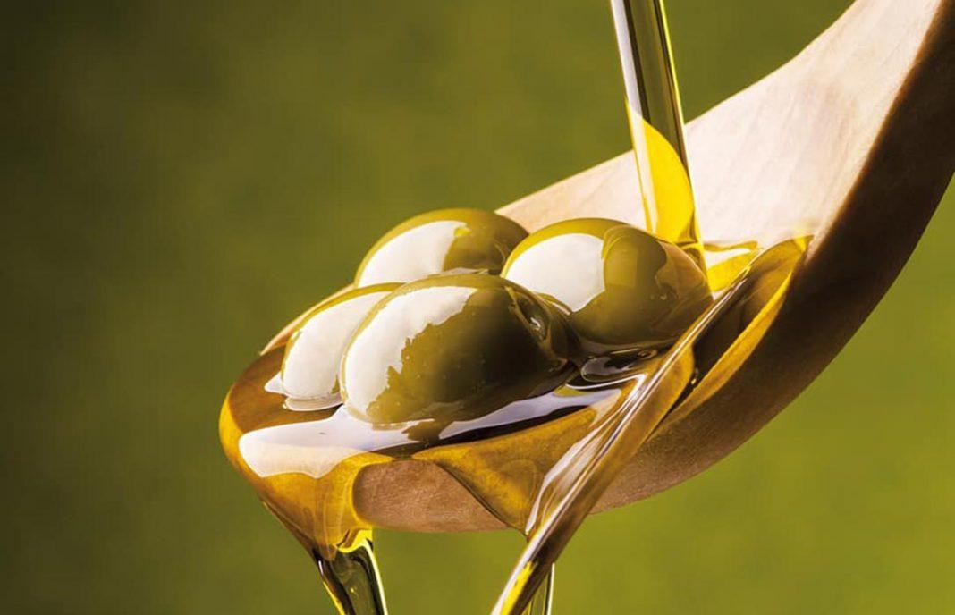 Sector oleícola ven imprescindible explorar los mecanismos de autorregulación para que el olivar rec