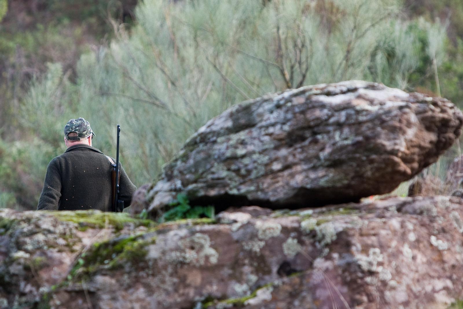 La Junta publica los periodos hábiles de caza para la temporada 2020/2021
