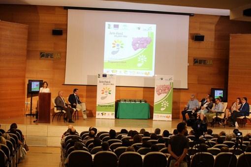 Una jornada celebrada en IFEJA evalúa el impacto de las políticas de desarrollo rural en la provinci
